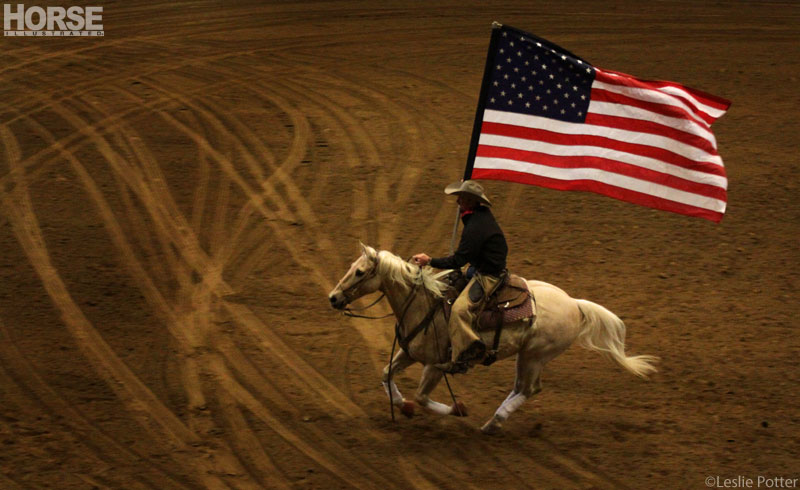 Horse rider with American Flag