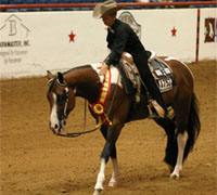 The Summer World Championship Paint Horse Show will be held in Fort Worth