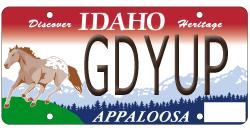 Order your custom Idaho Appaloosa license plate from AccessIdaho.com