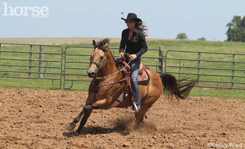 Practicing circles with a barrel horse