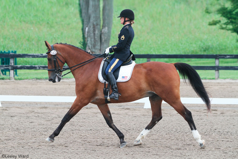 Dressage in Military Uniform