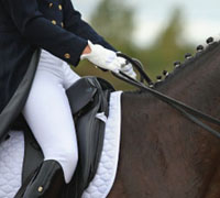 In 2010, dressage was added as an official AQHA class