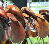 English saddles on consignment