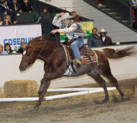 The Versatile Horse and Rider Competition is a part of the 3rd Equine Affaire