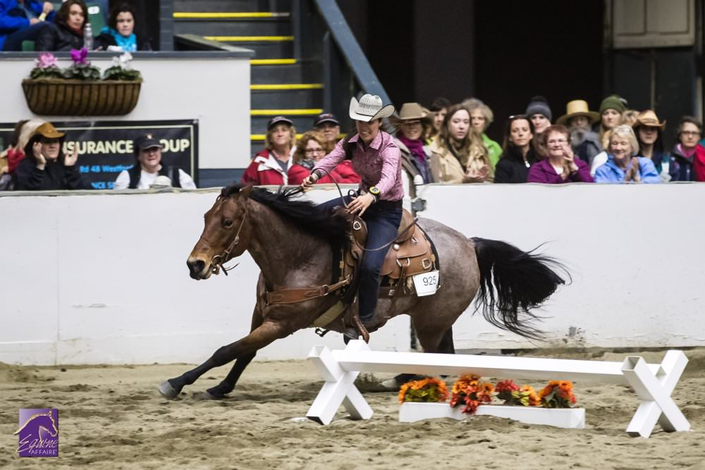 Versatile Horse and Rider at Equine Affaire