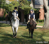 How do you learn as an equestrian?