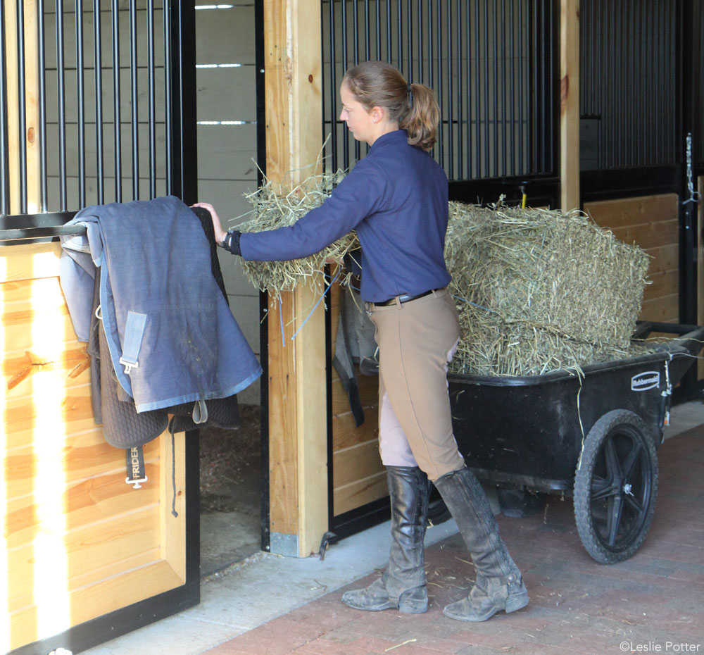 Feeding Hay in the Barn