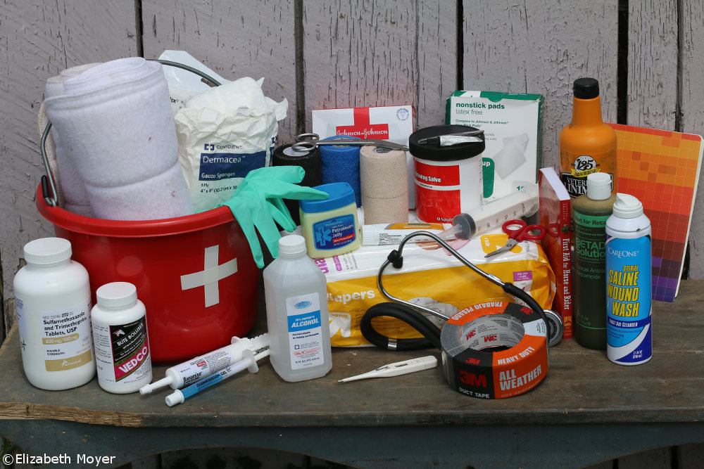 Horse First Aid Kit