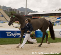 The 3-day Eventing competition is starting for the 2008 Olympics