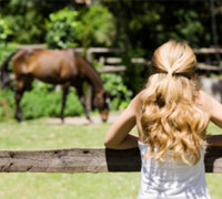 Girl looking at horse