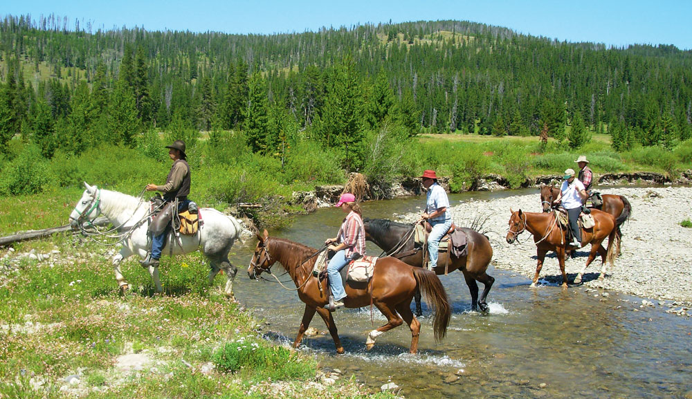Grand Tetons Horseback Riding