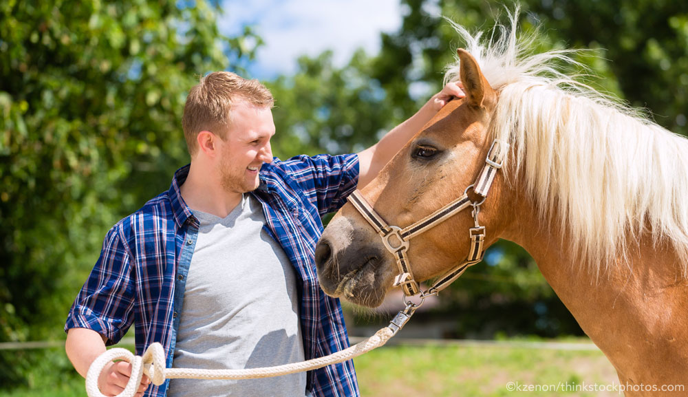 Horse with Dude