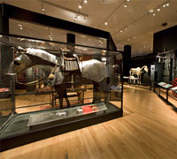 The Horse exhibition at the Carnegie Museum of Natural History