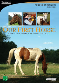 Our First Horse: Considerations Before You Buy - DVD