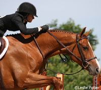 The NCAA Equestrian Nat'l Championship will feature eastern and western college champions