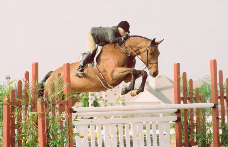 Mandy McCutcheon riding in the hunters
