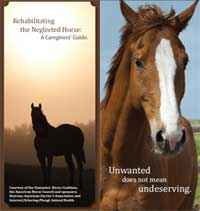 The Caregiver's Guide is the AHC's newest horsecare brochure