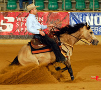 National Reining Horse Association Championship