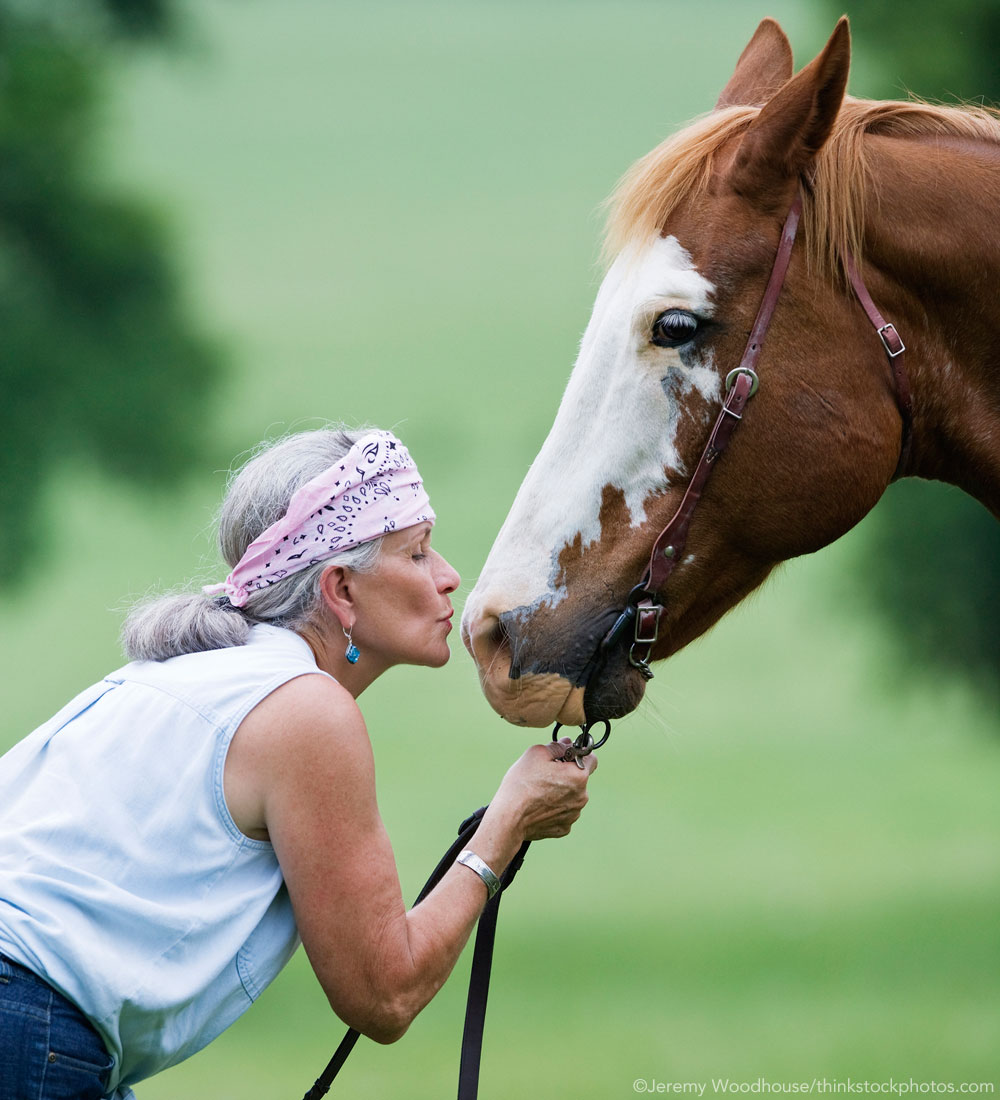 Horse and Older Person