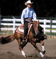 Tips for performing your best at your first reining competition
