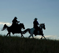 The BCHA is fighting to preserve land with recreational equestrian use