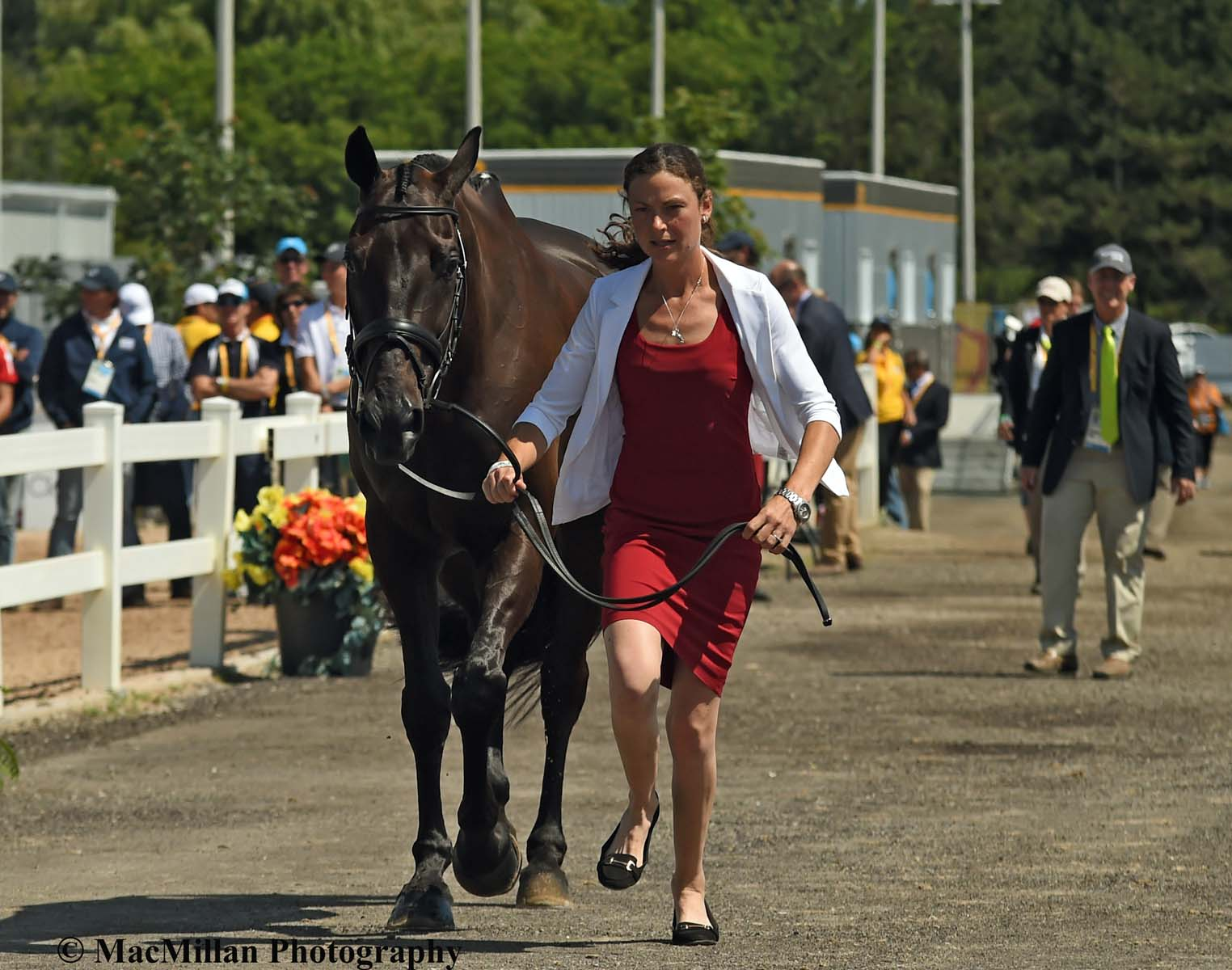 PanAm Eventing Preview