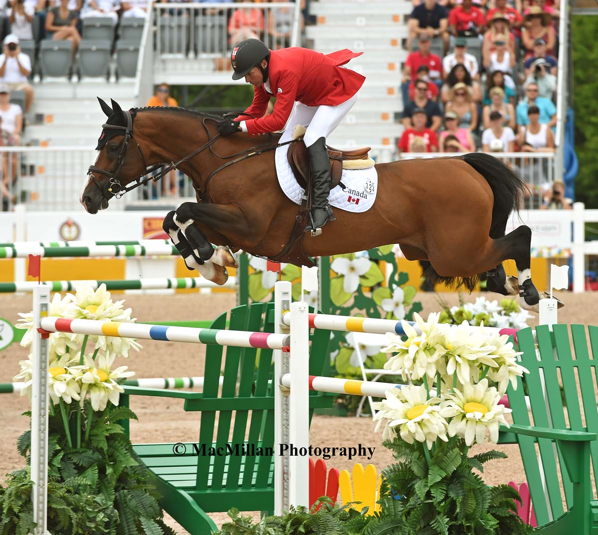 PanAm Show Jumping