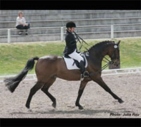 The first World Para-Equestrian Dressage Championships will be held at Hartpury College