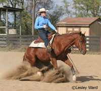 The NRHA created new show and class formats to help riders of all skill sets to compete