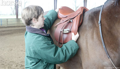 Saddle Fitter Video