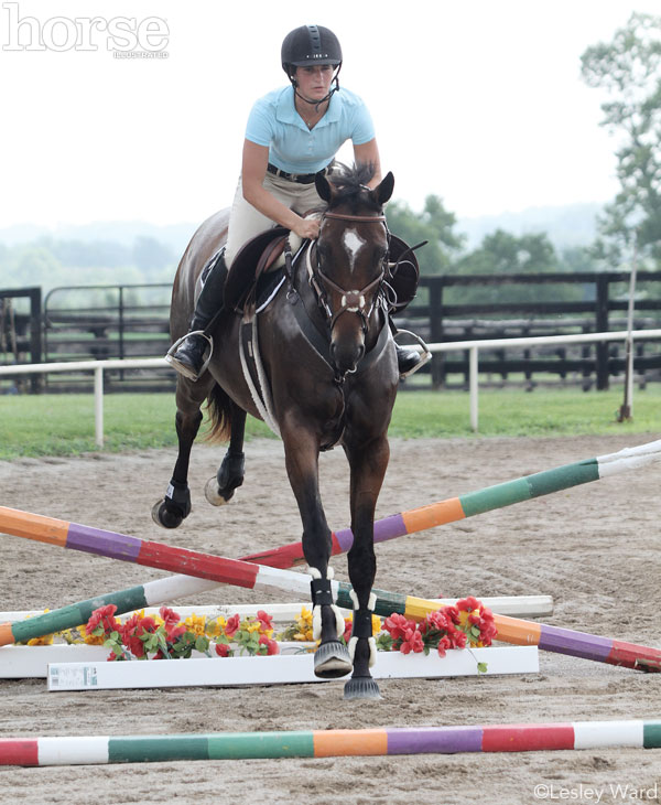 Schooling Over Jumps