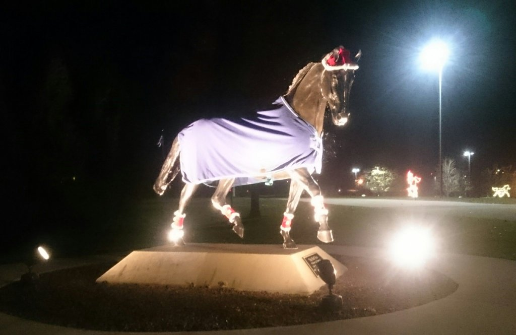 Southern Lights at the Kentucky Horse Park