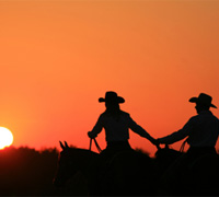 EquestrianSingles.com pairs riders together in hopes of creating love