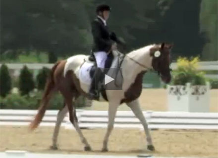 Meet the U.S. Para-Equestrian Dressage Team