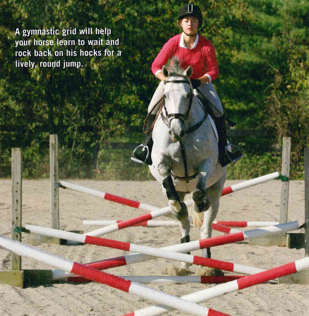 Teach Your Horse to Jump