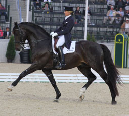 Meet the U.S. Dressage Team for the 2014 Alltech FEI World Equestrian Games