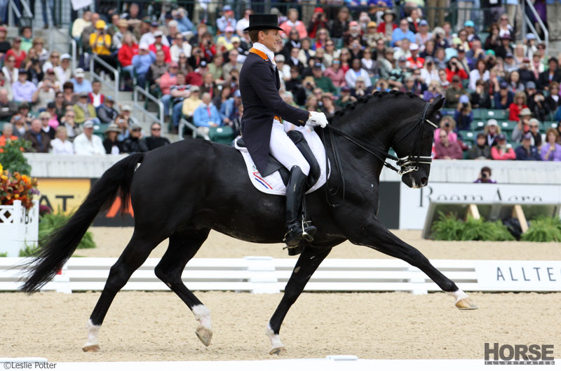 Moorlands Totilas at the 2010 Alltech FEI World Equestrian Games