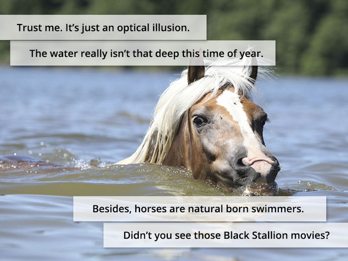 Trust me. It's just an optical illusion. The water really isn't that deep this time of year. Besides, horses are natural born swimmers. Didn't you see those Black Stallion movies?