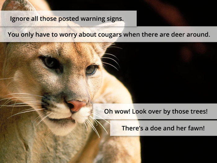 Ignore all those posted warning signs. You only have to worry about cougars when there are deer around. Oh wow! Look over by those trees! There's a doe and her fawn!