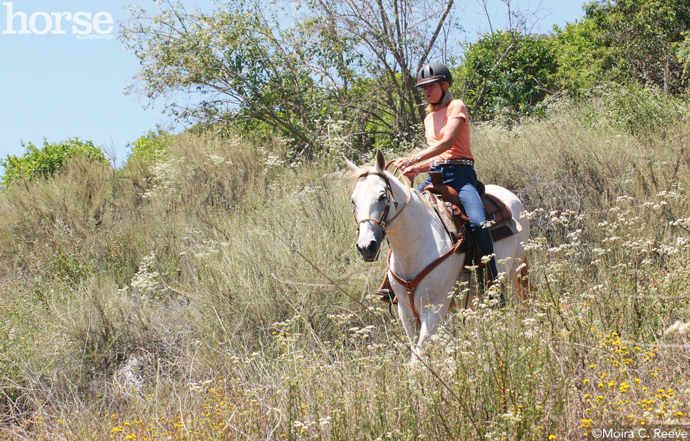 Trail Riding on Hills