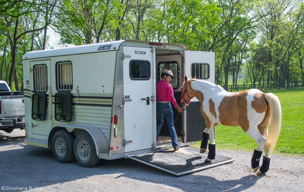 Loading a Horse in the Trailer