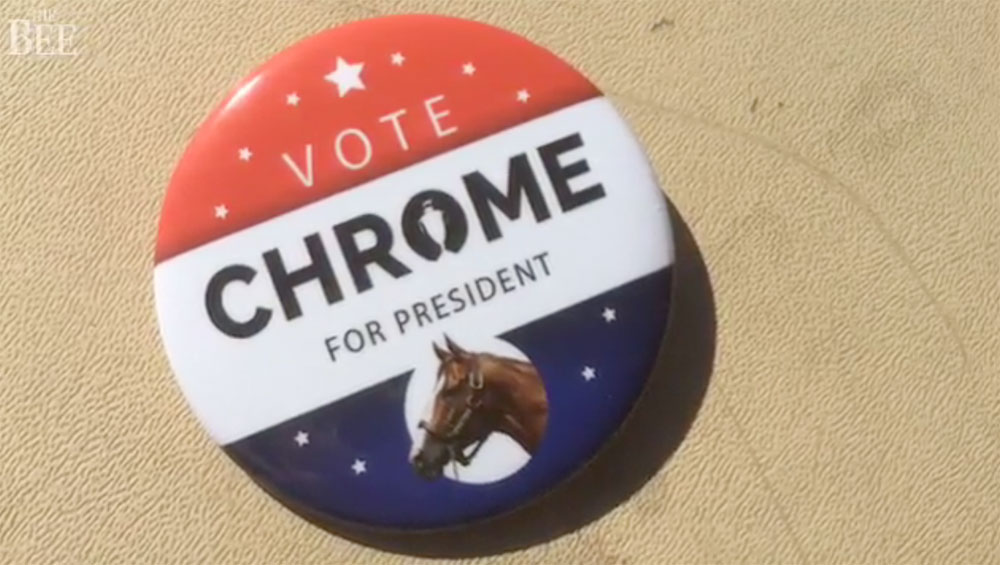 Chrome for President