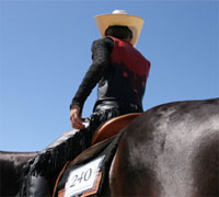 The AQHA and NSBA met to discuss a western judging system