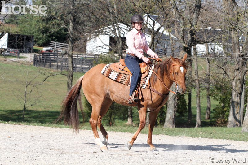 Teaching the Pivot Under Saddle