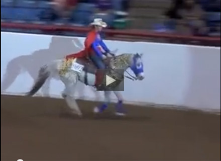 Freestyle Reining Superman Style