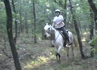 Introduction to Endurance Riding