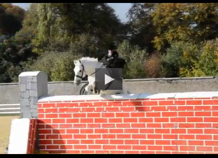 Side Saddle Jumping World Record