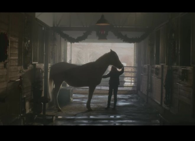 Last Horse at the Rescue