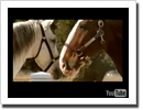 2009 Budweiser Clydesdale Ad - Circus