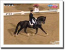 Edward Gal and Moorlands Totilas Set New Dressage World Record